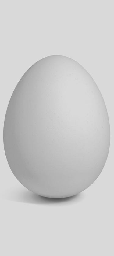 huevo-2